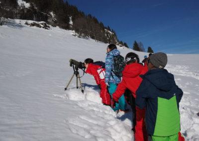 Randonnée en raquettes et observations de la faune
